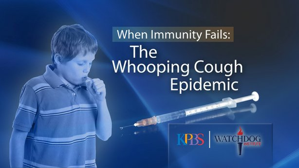 "Title graphic for ""When Immunity Fails: The Whooping Cough Epidemic"""