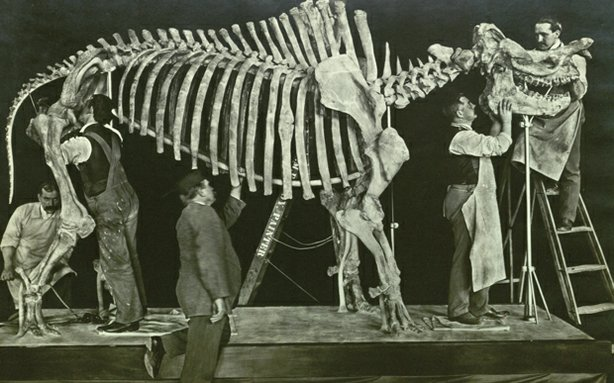 "Promotional image of a dinosaur skeleton being mounted on display. ""Dinosaur Wars"" reveals the story of two paleontologists who uncovered the remains of 130 species of dinosaur and collected thousands of specimens, putting American science on the world stage in the late 1800s."