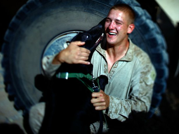 Marine Pfc. Dave Kroha, 23, from Cromwell, Conn., plays with his bomb-sniffing dog, Mike. Kroha dropped out of college and was in a few bar fights before his mother jokingly suggested that he go and fight for his country. The next day he enlisted in the Marine Corps.