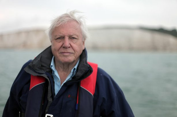 "Sir David Attenborough, host of ""How Many People Can Live On Planet Earth?"""