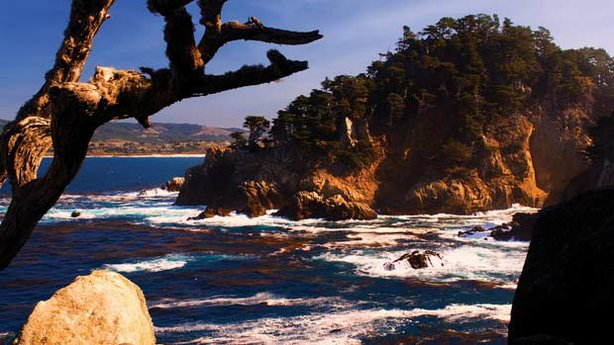 A dramatic view of Point Lobos State Natural Preserve.