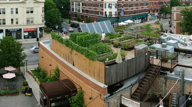 Uncommon Ground, a certified green restaurant in Chicago, hosts an organic farm on its rooftop.