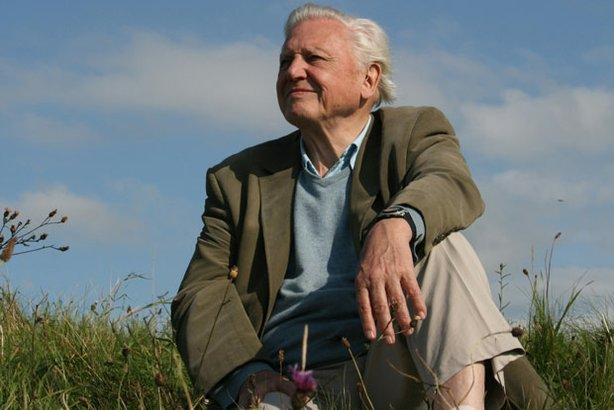 David Attenborough on hillside in UK.