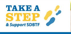 Graphic logo for San Diego Brain Tumor Foundation.