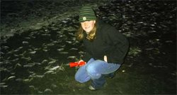 Promotional photo of grunion runs with Birch Aquarium naturalists. 