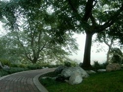 Photo of the garden in Fall/Winter 2010, by Japanese Friendship Garden