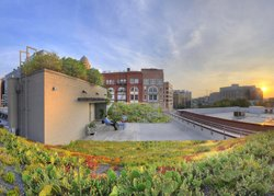 The American Society of Landscape Architects (ASLA) Green Roof. Courtesy of ASLA