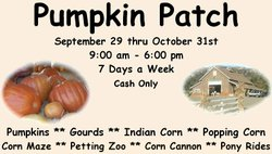 Promotional graphic for the pumpkin patch and more at Mountain Valley Ranch. Courtesy of Mountain Valley Ranch