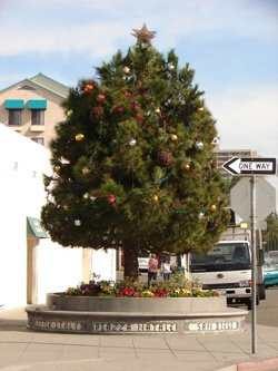 Promotional image of Little Italy's Holiday Tree.