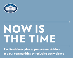 White House Gun Plan