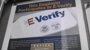 Tease photo: E-Verify Lessons From Arizona