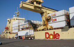 Dole Expected To Sign 25 Year Lease