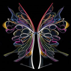 Butterfly #2 2006, 36 x 36 edition of 12, 24 x 24 edition of 15, 14 x 14 edition of 35.