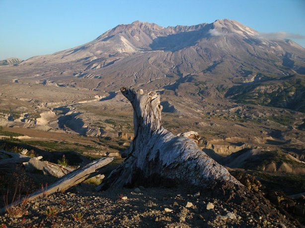 Mt. St. Helens in the morning light.