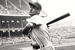 Ted Williams at bat