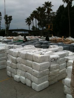 Tijuana municipal police display 105 tons of marijuana they seized from a convoy of smugglers on October 18, 2010.