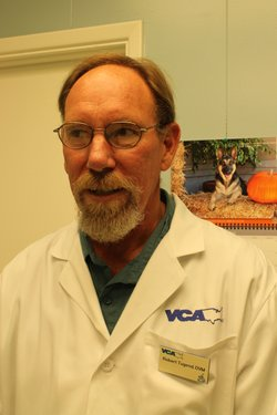 Veterinarian Robert Tugend operated on Monty, the San Diego police dog who was shot in the Skyline area.