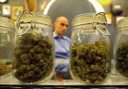 Jars full of medical marijuana are seen at Sunset Junction medical marijuana dispensary on May 11, 2010 in Los Angeles, California. The dispensary is one 25 plaintiffs in a lawsuit against the city of Los Angeles fighting to stay open after city prosecutors began notifying 439 medical marijuana dispensaries that they must shut down by June 7. (Photo by Kevork Djansezian/Getty Images) 