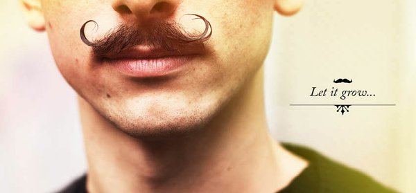 Just one of Movember&#39;s official moustaches. 