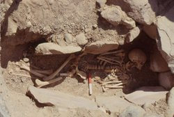 A 3000-year-old skeleton in a cemetery near Khirbet en Nahas