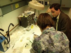 Dr. Frances Ross (left) places a slice of silicon in a specimen holder while David Pogue watches.