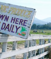 Visitors are greeted with welcome signs promoting the local harvest of the month.