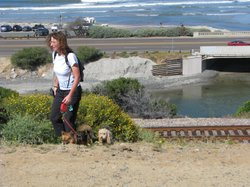 Veronica Gianecolla walking her dogs by the bridge next to Cardiff State Beach where the city removed the monster painting from a concrete space below Highway 101. May 27th 2011