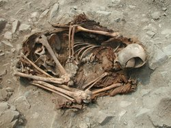 Anomalous sprawled burial with clear marks of violence, Lima, Peru.