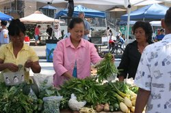 The City Heights Farmers' Market has become a model for outdoor markets that offer fresh produce to low-income immigrant folks in the inner city. July 23, 2011.
