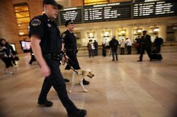 Metropolitan Transit Authority police keep watch inside Grand Central Terminal during the Operation Railsafe exercise October 8, 2010 in New York City.