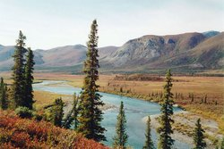 A scenic view from the Arctic National Wildlife Refuge. 
