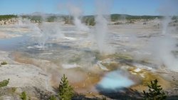 Porcelain Basin in Yellowstone National Park shows clear evidence of geothermal activity.