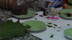 Marcel the Shell became an Internet sensation in the stop-motion short &quot;Marcel The Shell With Shoes On.&quot; 