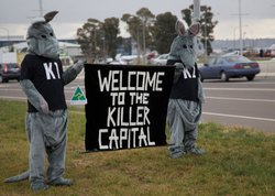 Protesters responding to kangaroo cull, Australia.