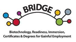 BRIDGE  logo explains goal of job training program.