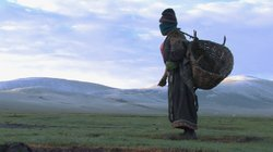 Yama collects yak dung in early morning.