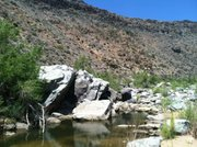 A swimming hole on the Agua Fria National Monument in Arizona.