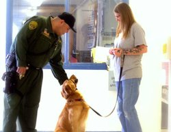 Prison inmate, Tattoo, training her shelter dog to become a service animal for the disabled.