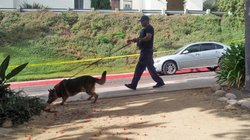 A bomb-sniffing dog was brought in to investigate a bomb threat at SDSU on August 22, 2012.