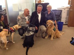 Sen. Charles Schumer with PTSD assistance dogs