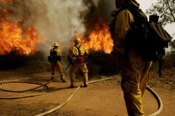 Firefighters battle the Witch Fire on October 23, 2007 in Escondido, California. 