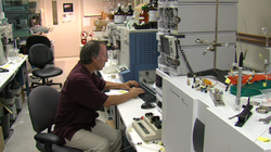 Steven Briggs, a biology professor at UC San Diego, in his lab.