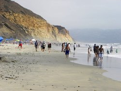 Torrey Pines State Beach in San Diego
