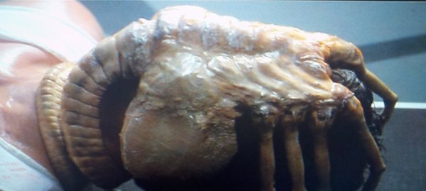 "The alien creature in the movie ""Alien"" displays the classic behavior of a parasite, laying an egg inside a human host."