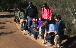 A group of families on a nature tour, organized by the San Diego Audubon Society, stop to look at bird and animal tracks along the path, Feb. 8, 2014.