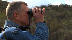 Philip Unitt, curator for the San Diego Natural History Museum, looks for birds through his binoculars at Mission Trails Regional Park, February 4, 2014.