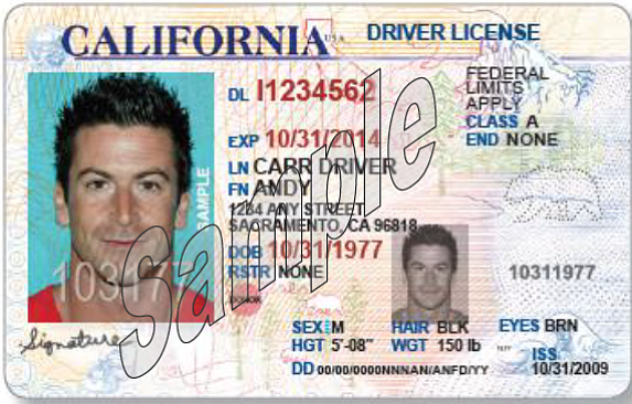Microscopic Look at my CA Driver's License- 10.27.11
