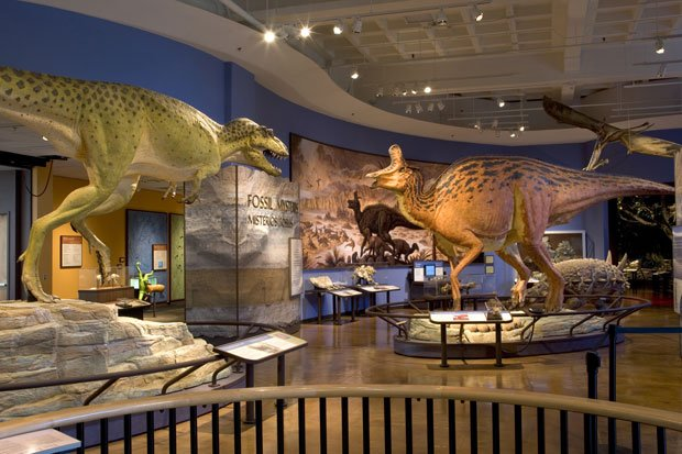 San Diego Natural History Museum Kpbs
