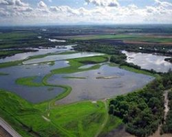 The Sacramento-San Joaquin Delta encompasses 1,600 square miles, drains over 40 percent of the State of California, and provides habitat and stop-over ground to numerous species of fish and wildlife.