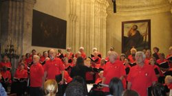 The New York City Labor Chorus performing in Cuba.